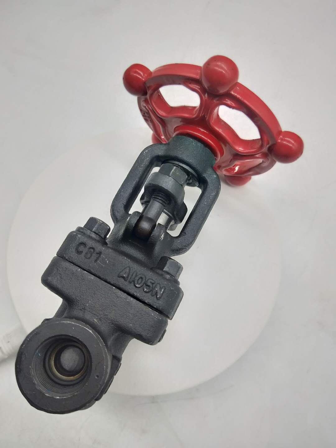 Forged WCB Gate Valve