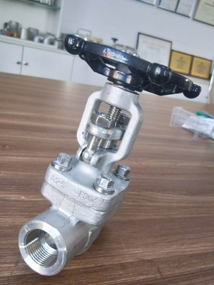 Forged Stainless Steel 800LB Gate Valve