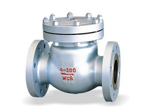 Stainless Steel Flanged H14W Swing Check Valve